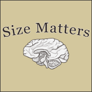Size Matters funny t-shirt geek brain penis size